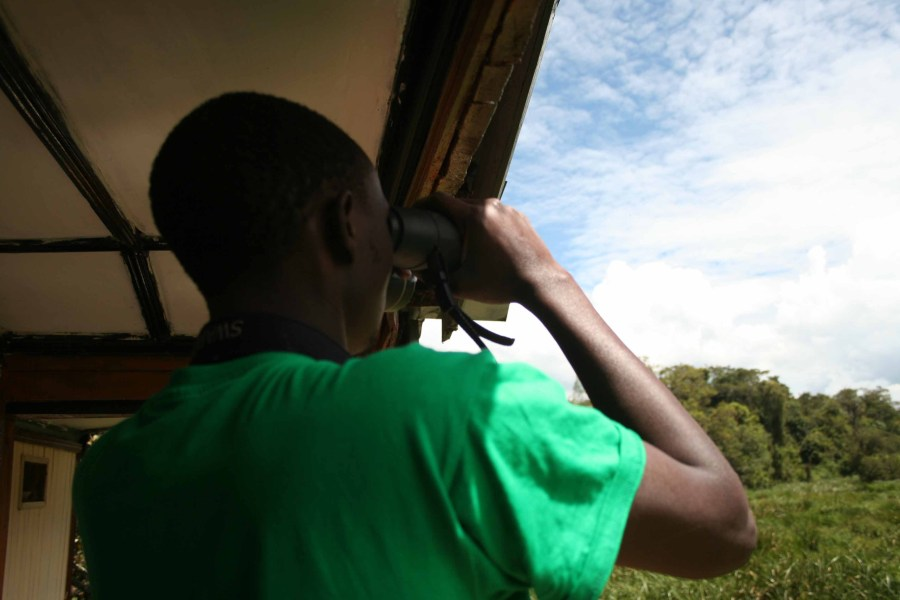 Birding in Saiwa Swamp