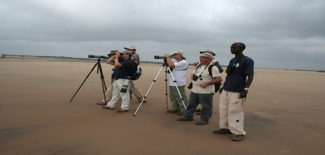 Bird watchers birding along Sabaki river estuary