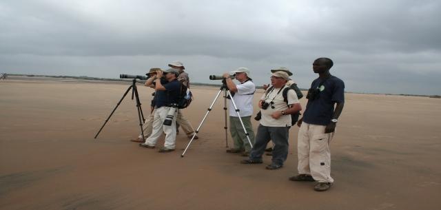 Bird watchers birding along Sabaki river estuary