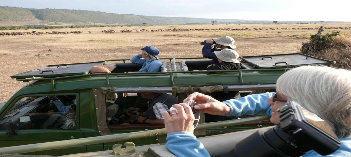 Birding Eco-tours  in African savanna, Kenya