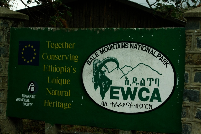 Ethiopia 015