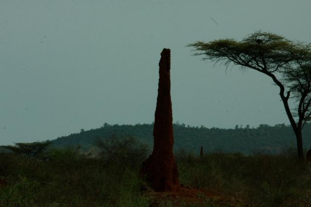 Ethiopia 077